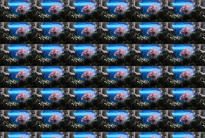 Vinylová Tapeta Ďábel Firefish - Vodní a mořský život