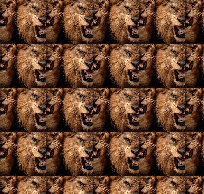 Vinylová Tapeta Close-up shot dvou řvoucí lev - Témata