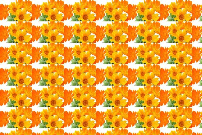 Vinylová Tapeta Květy měsíčku - Květiny