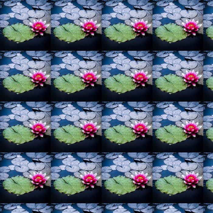 Vinylová Tapeta Ninfea con foglia verde - Květiny