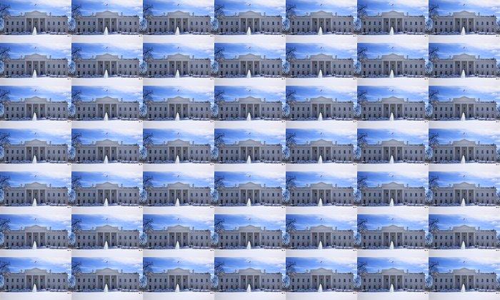 Vinylová Tapeta Bílý dům Fontána Flag Po Sníh Pennsylvania Ave Washington - Památky
