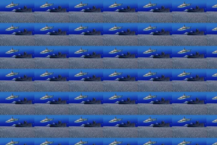 Vinylová Tapeta Sharkwreck - Vodní a mořský život