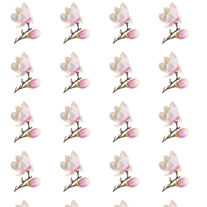 Vinylová Tapeta Bílá magnólie - Květiny