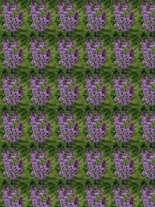 Vinylová Tapeta Pobočka fialové kvítky na zeleném listy pozadí - Květiny