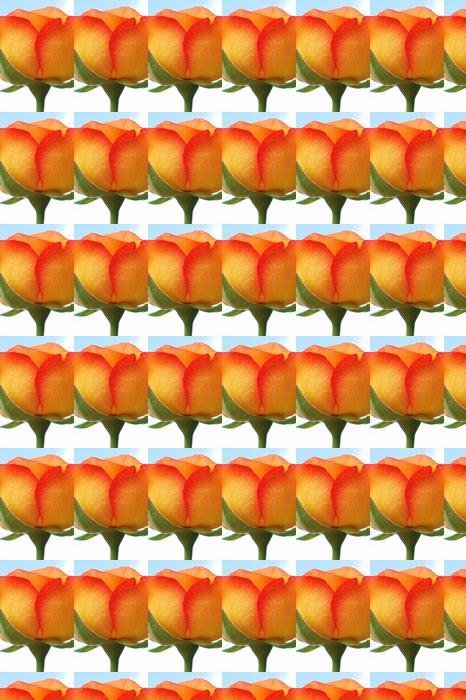 Vinylová Tapeta Žluté a oranžové růže - Květiny