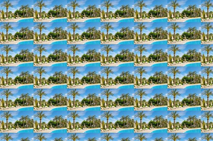 Vinylová Tapeta Venkovní bazén a krásné palmy - Palmy