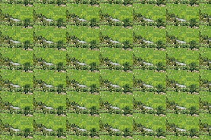 Vinylová Tapeta Tabákové pole - Zemědělství