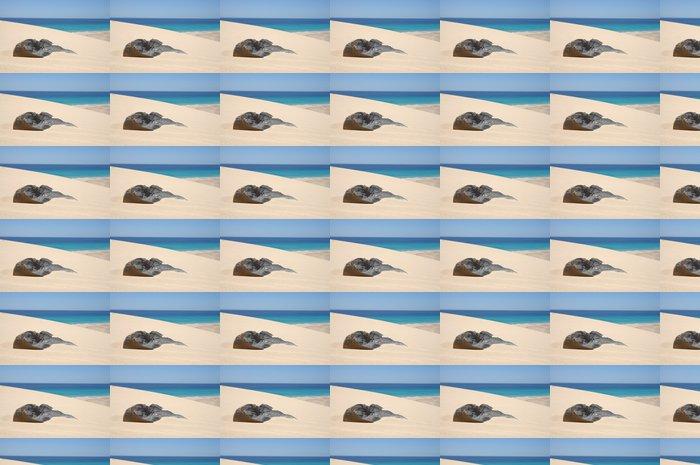 Vinylová Tapeta Písek duny na kanárském ostrově Fuerteventura, Španělsko - Evropa