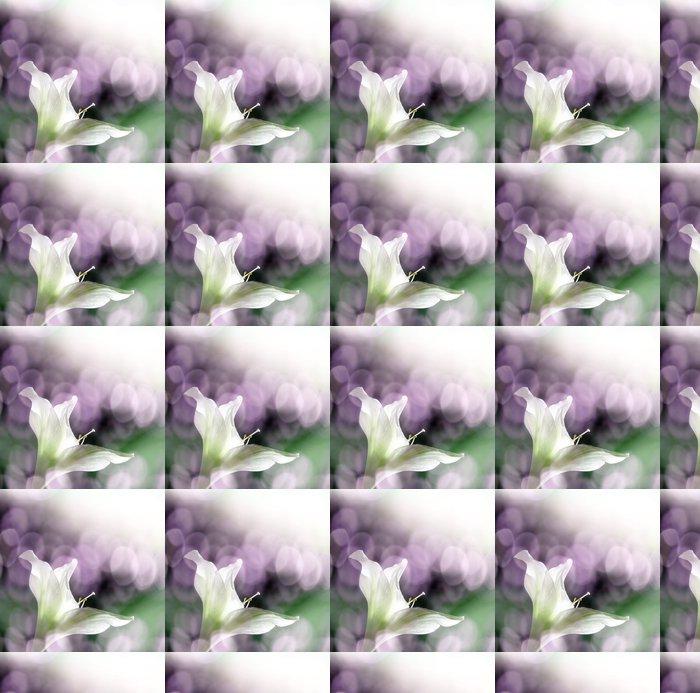 Vinylová Tapeta Amarylis květiny a slunce bokeh - Květiny