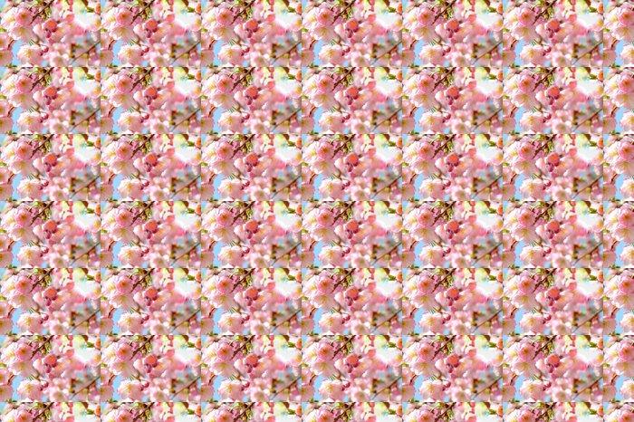 Vinylová Tapeta Mandlový květ - Roční období