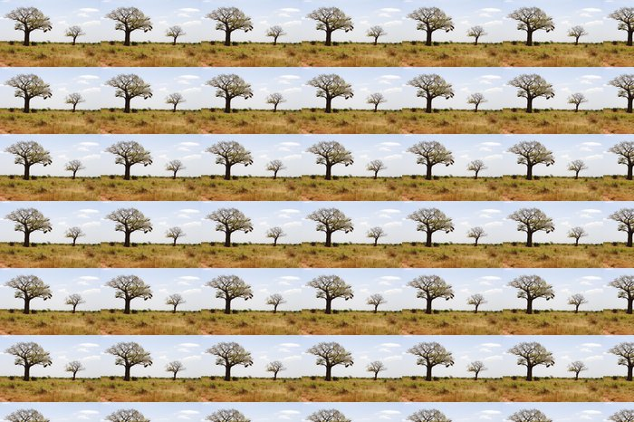Vinylová Tapeta Baobab v africké savaně - Afrika