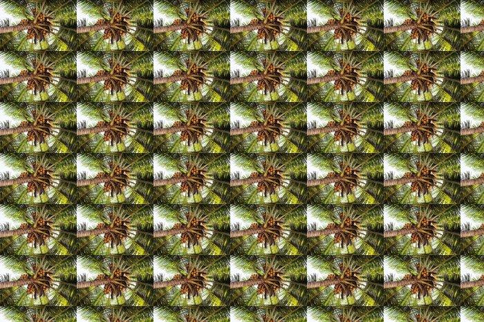 Vinylová Tapeta Abstract-13 - Prázdniny