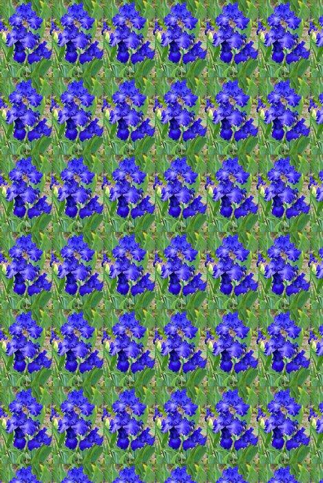 Vinylová Tapeta Schwertlilie 07 - Květiny
