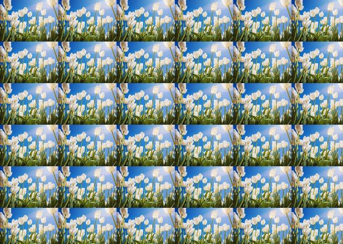 Vinylová Tapeta Kvetoucí tulipány s modrou oblohou jako pozadí - Štěstí