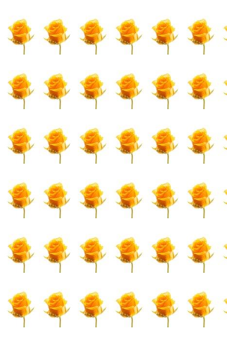 Vinylová Tapeta Krásná růže - Květiny