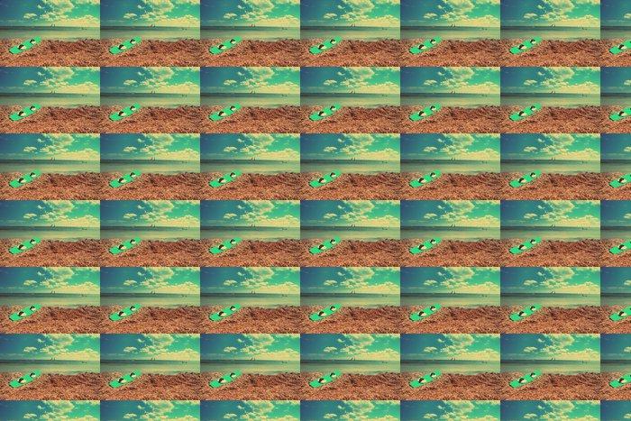 Vinylová Tapeta Deska pro windsurfing na pobřeží, s retro efekt - Prázdniny