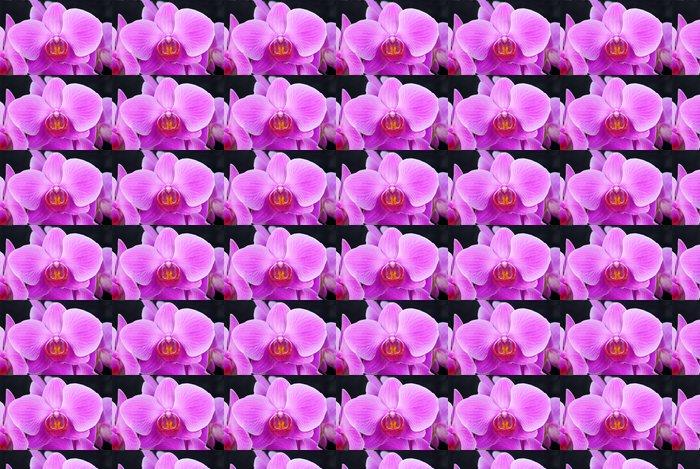 Vinylová Tapeta Orchidea - Květiny