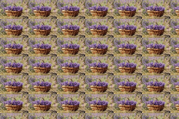 Papel de Parede em Vinil Purple field of lavender flowers - Interior
