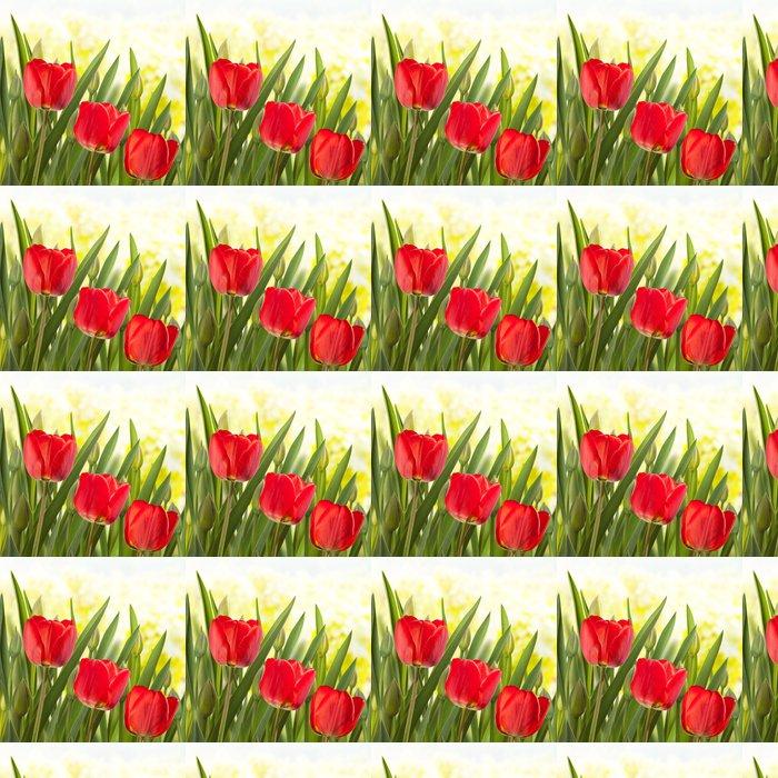 Vinylová Tapeta Tulips - Roční období