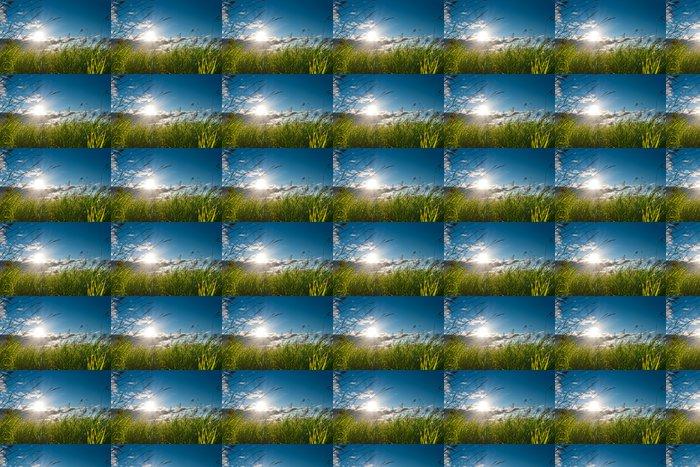 Vinylová Tapeta Letní slunce - Roční období