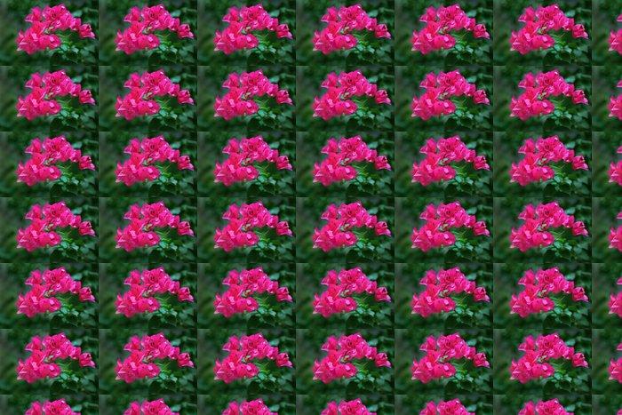 Vinylová Tapeta Popínavé rostliny květiny - Květiny