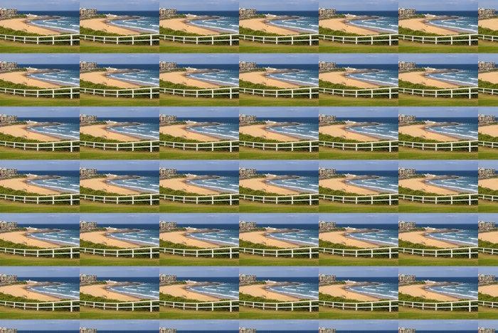 Vinylová Tapeta Newcastle beach, NSW, Austrálie - Oceánie