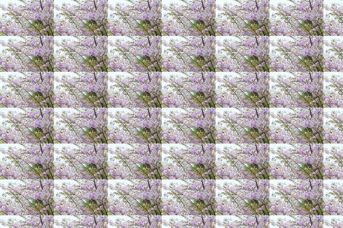 Vinylová Tapeta Thai Bungor, Lagerstroemia loudonii (Kyprejovité) - Květiny