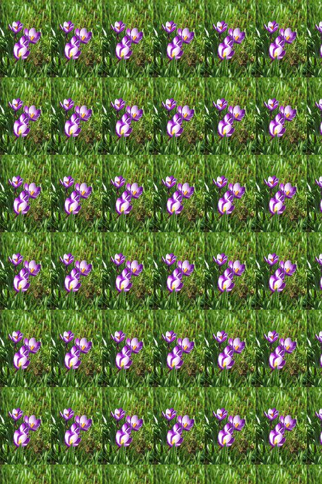 Papier Peint à Motifs Vinyle Krokusse - Fleurs