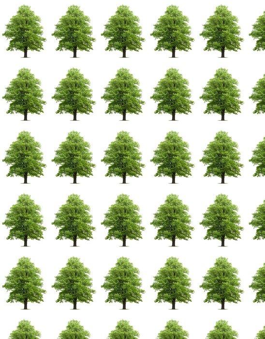 Vinylová Tapeta Maple tree - Stromy