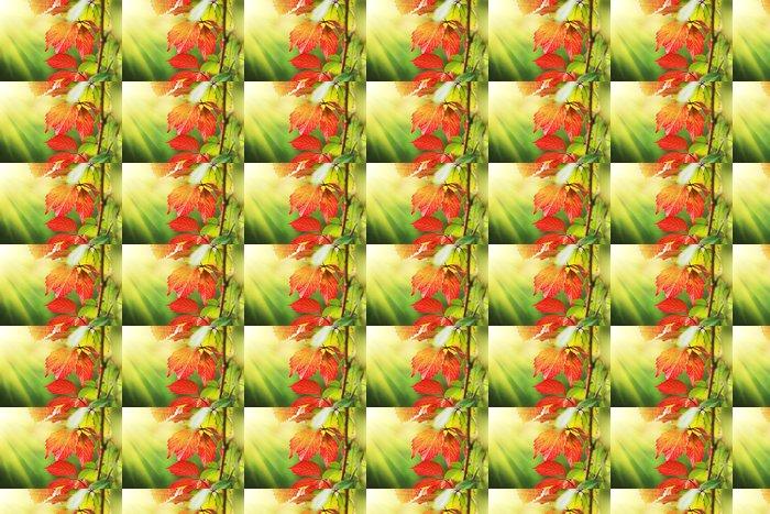 Vinylová Tapeta Krásné červené podzimní listí na slunci - Roční období
