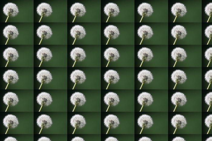Vinylová Tapeta Loewenzahn - Květiny