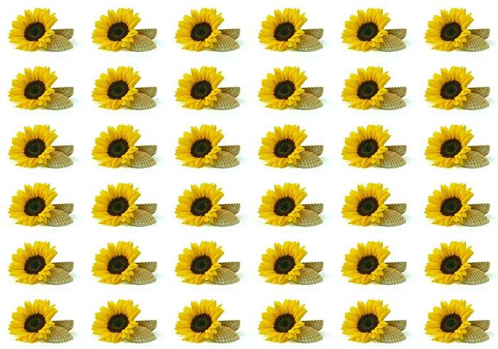 Vinylová Tapeta Slunečnice s mušlí na bílém pozadí - Květiny