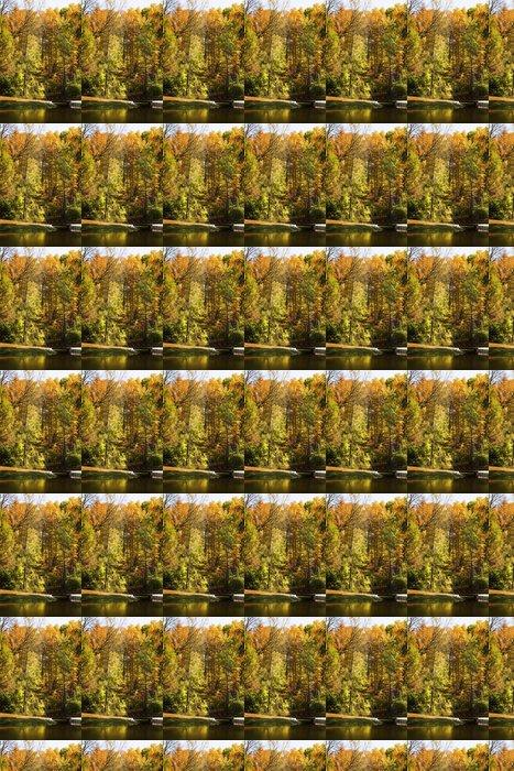 Vinylová Tapeta Autumn_trees - Roční období