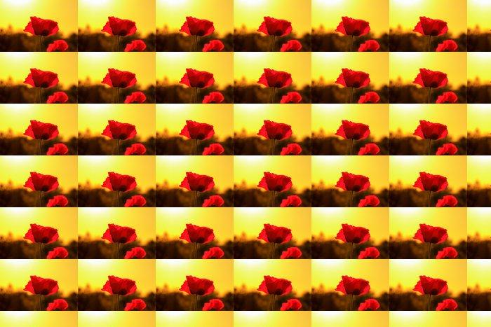 Vinylová Tapeta Red Sunset mák květ - Květiny