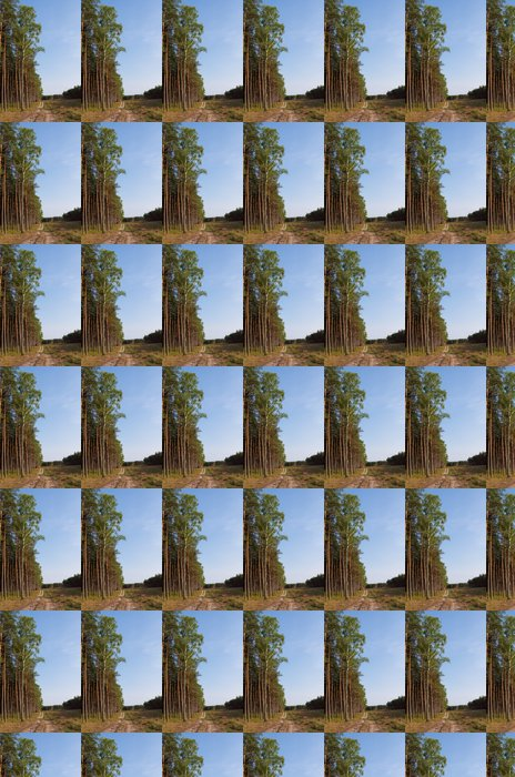 Vinylová Tapeta Cesta lesem - Lesy