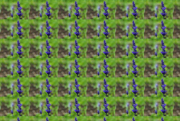 Vinylová Tapeta Purple Salvia - Květiny