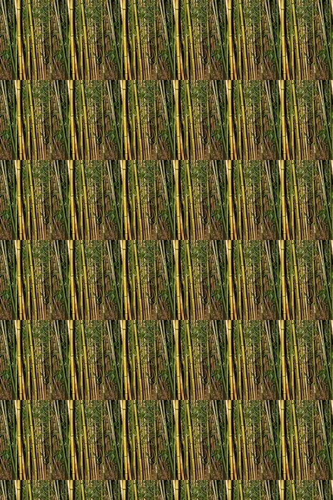 Vinylová Tapeta Bambus - Roční období