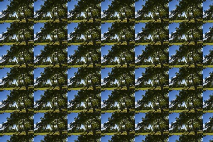Vinylová Tapeta Normandie - Evropa