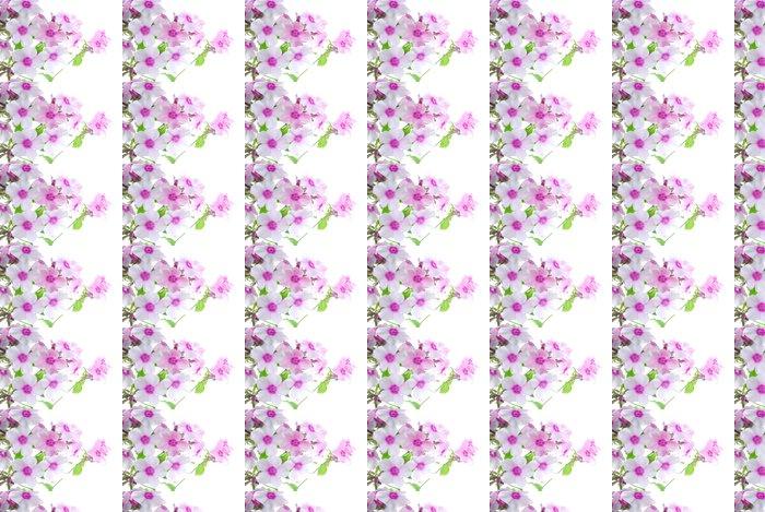 Vinylová Tapeta Bílé a růžové květy - Květiny