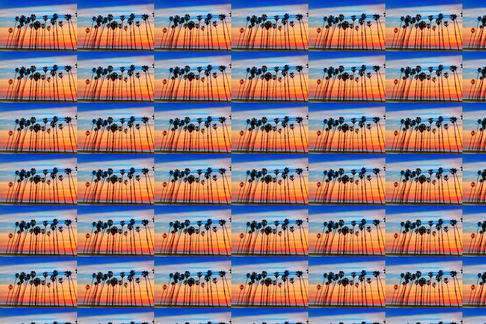 Vinylová Tapeta Kalifornie Západ slunce Palmové řádků v Santa Barbaře - Amerika