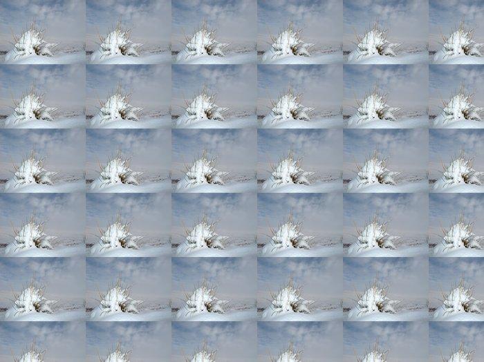 Vinylová Tapeta Tráva chomáč pokryté sněhem proti zatažené obloze - Roční období