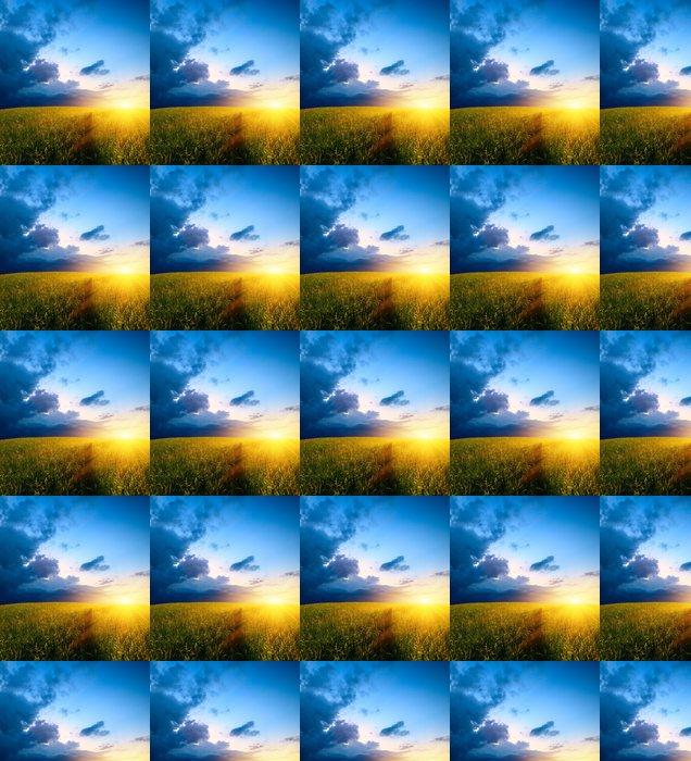 Vinylová Tapeta Pole trávy a západ slunce - Roční období