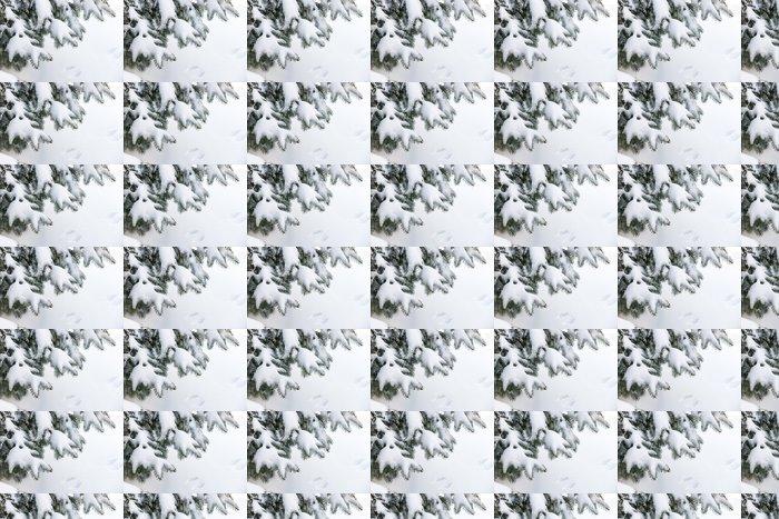 Vinylová Tapeta Sníh na zimní evergreen poboček - Roční období