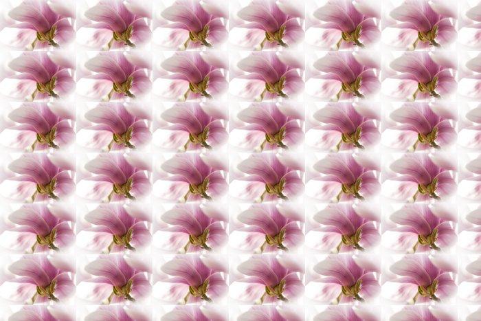 Vinylová Tapeta Magnolie - Roční období