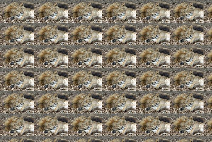 Vinylová Tapeta Sleeping Lion & Lvice - Témata