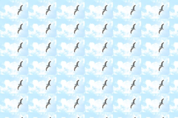 Vinylová Tapeta Bílý racek - Nebe