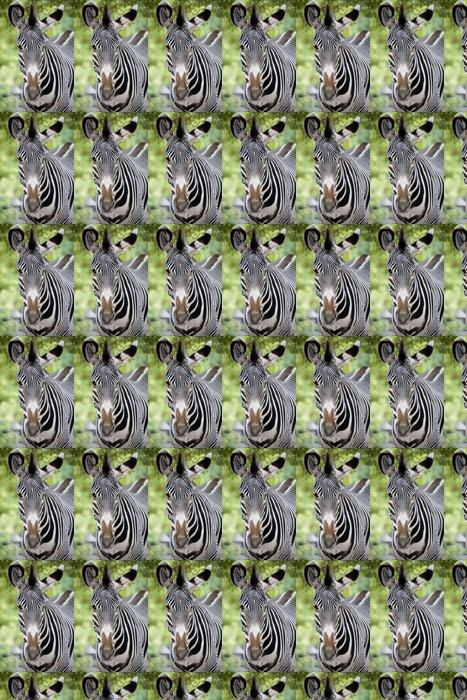Vinylová Tapeta Čelní pohled na zebra - Témata