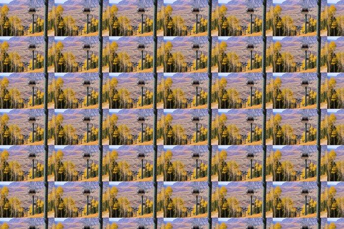 Vinylová Tapeta Lano způsob blízko města Telluride v Rocky Mountains - Roční období