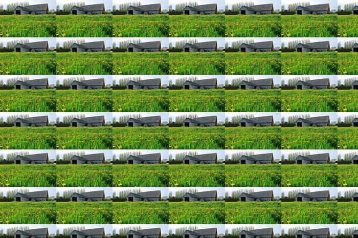 Vinylová Tapeta Staré stodoly v oblasti hospodářství - Rostliny