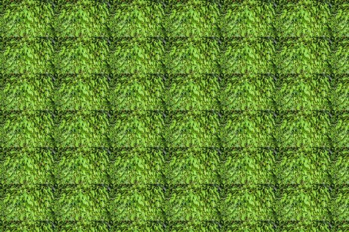 Vinylová Tapeta Mladý Fern Leaf. - Struktury